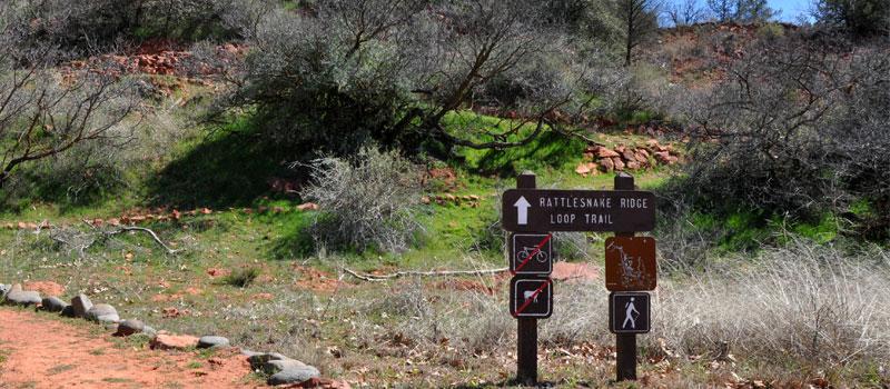 Rattlesnake Ridge Loop Trail