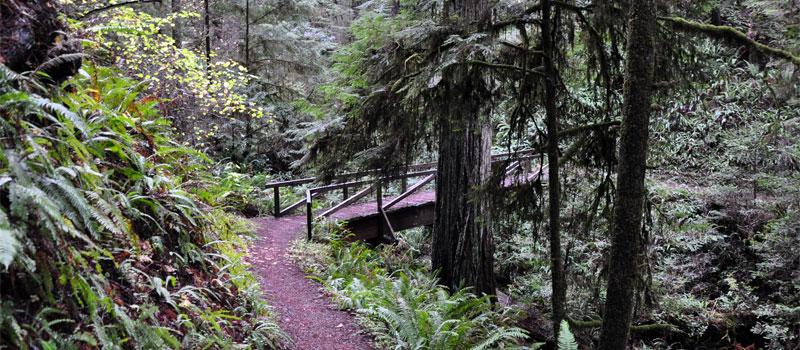 Hatton Trail
