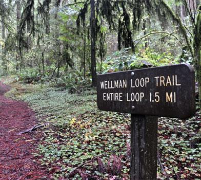 Wellman Trailhead