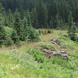 Abineau Trail