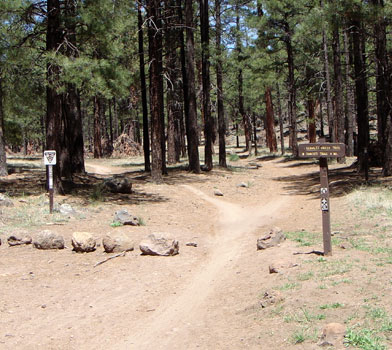 Schultz Creek Trail