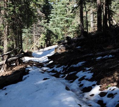 Bill Williams Trail Snow