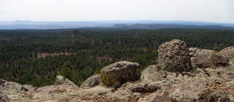 Summit Mountain Trail