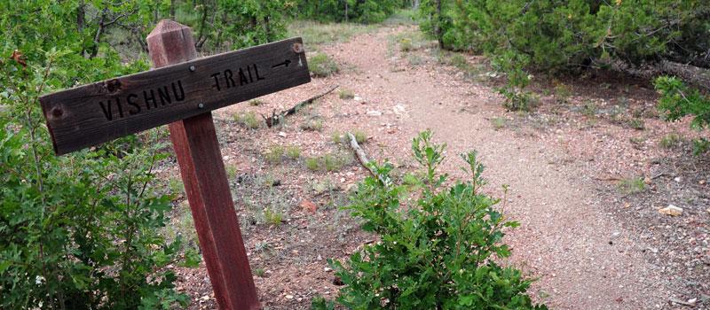 Vishnu Trail