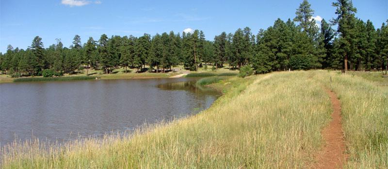 Whitehorse Lake Trail