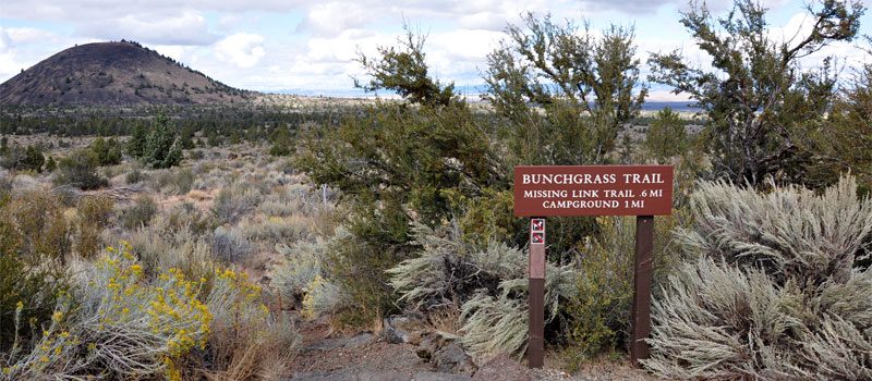 Bunchgrass Trail