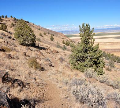 Gillem Bluff Hike