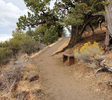 Schonchin Butte Trail