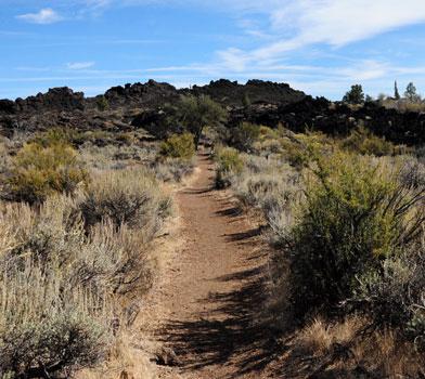 Thomas-Wright Battlefield Trail