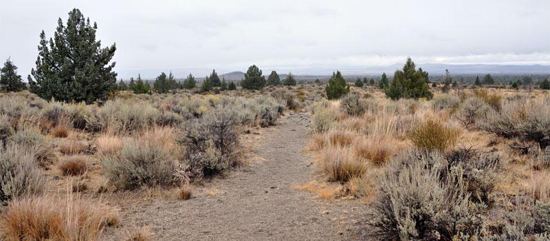 Three Sisters Trail