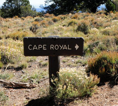 Sign Post at Cape Royal Trailhead