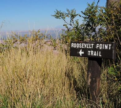 Roosevelt Point Sign Post