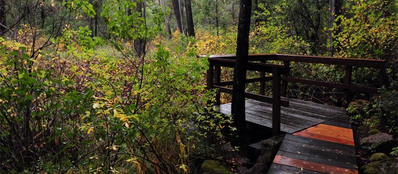 Darlington Trail