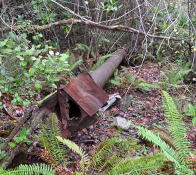 Myrtle Creek Mining Ditch