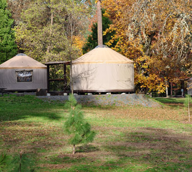 Valley of the Rogue State Park Yurts